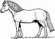 malvorlagen fur kinder ausmalbilder pferde und ponys