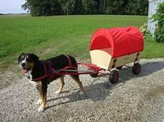 hundewagenkomplettsatz bollerwagen