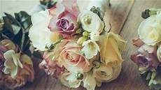 Flower Wallpaper Macbook Air by Free Flower Mac Wallpapers Imac Wallpapers Retina