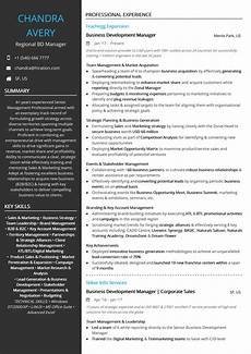 business development resume exles and sles