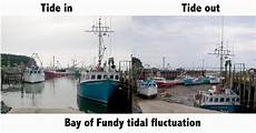 how are tidal waves formed the super fins
