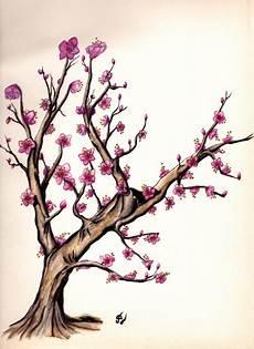 fleur de cerisier dessin cerisier aquarelle