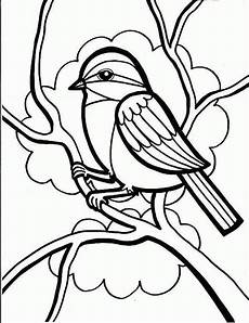 8 bird coloring pages jpg ai illustrator