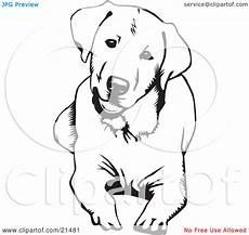 clipart illustration of a and curious labrador