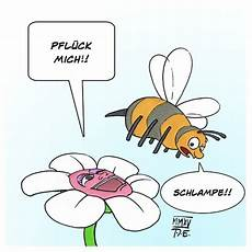 Malvorlage Biene Und Blume Blume Und Biene Timo Essner Liebe Toonpool