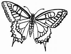 Ausmalbilder Schmetterling Pdf Kostenlos Ausmalbilder Zum Drucken Malvorlage Schmetterling Kostenlos 6