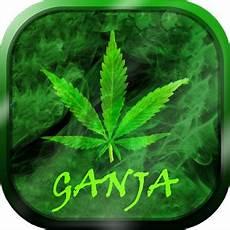 marijuana live wallpaper pro apk my ganja live wallpaper play softwares