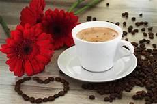 fiori coffee coffee and beautiful flowers stock photo image of