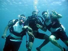 scuba diving wool bay jetty yorke peninsula south australia australia