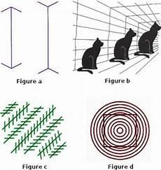 les illusions visuelles