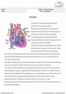 56 best science printable worksheets primaryleap images pinterest