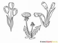 Gratis Malvorlagen Zum Ausdrucken Blumen Blumen Zum Ausmalen Kostenlos