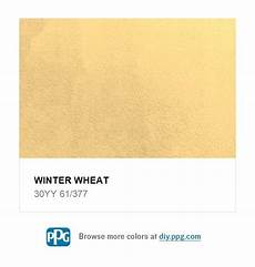 winter wheat 30yy 61 377 paint colors yellow paint colors yellow painting