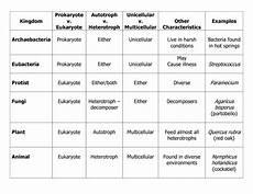 six kingdoms of life worksheet worksheet answers