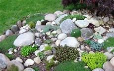 steine für garten 100 unglaubliche bilder moderner steingarten