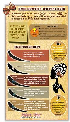 American Hair Information how protein softens hair infographic