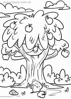malvorlage apfelbaum malvorlagen ausmalbilder