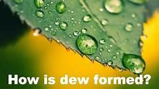 how is dew formed how is dew formed urdu subtitles youtube