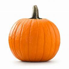 royalty free pumpkin pictures images and stock photos