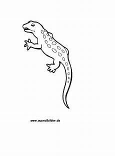Malvorlagen Gratis Gecko Ausmalbild Gecko Kostenlos Ausdrucken