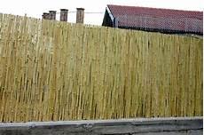 stuoie di canne 187 recinzioni in canne