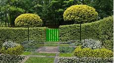 arbre pour petit jardin choisir un arbre pour un petit jardin