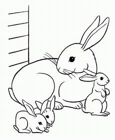 free printable rabbit coloring pages for