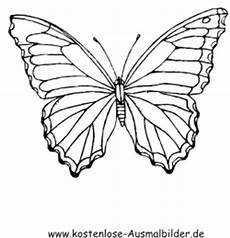 Ausmalbilder Zum Ausdrucken Kostenlos Schmetterlinge Kostenlose Ausmalbilder Ausmalbild Schmetterling 5