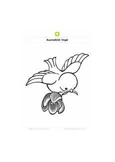 Malvorlage Vogel Mit Blume Ausmalbilder V 246 Gel Kostenlose Ausmalbilder