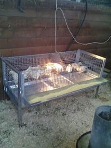 gabbie x polli gabbia polli ingrasso cm 143x60