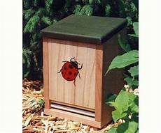 ladybug house plans ladybug house plans how to build a ladybug house bird