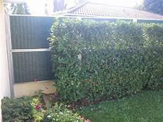 haie anti bruit fabricant et installateur mur anti bruit aquitaine mur