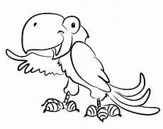 Ausmalbilder Tiere Papagei Papagei Mit Bildern Papagei Ausmalbilder Tiere