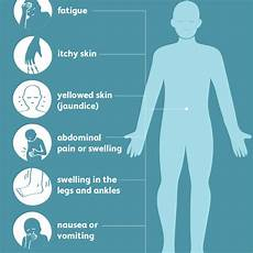 transaminases élevées causes transaminitis symptoms causes diagnosis and treatment