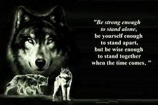 Lone Wolf Quotes Hd Wallpaper