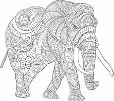 elephant coloring pages for adults best coloring pages