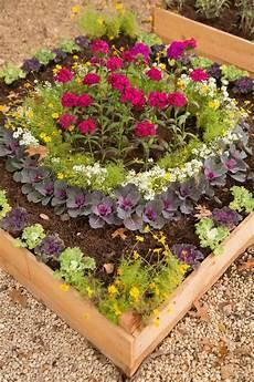 Flower Box photos hgtv