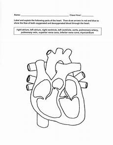 cardiovascular system drawing at getdrawings com free for personal use cardiovascular system