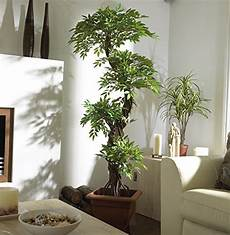 arbre d interieur design chic indoor outdoor quality faux japanese spiral