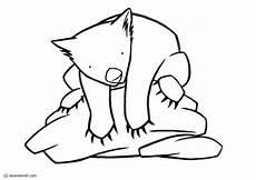 Malvorlagen Zum Ausdrucken Wombat Malvorlage Wombat Kostenlose Ausmalbilder Zum Ausdrucken