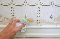 stockflecken wand entfernen domestic science tip how to remove water stains from