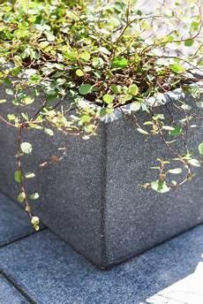 blumenkübel aus beton blumenkasten balkonkasten aus beton quot flobo quot 60 cm anthrazit