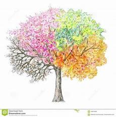 Vier Jahreszeiten Malvorlagen Ninjago Vier Jahreszeiten Baum Handdrawing Lokalisiert Stock
