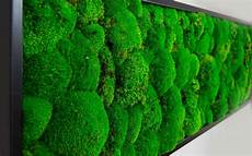 Moosbild Selber Machen - diy moosbild selber machen wandbilder selber kleben