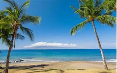 Hawaiian Tropical Palm Tree by Wallpapers Hawaii Tropical Islands The Sea