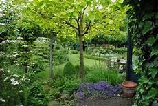arbre pour petit jardin la d mes arbres pour mon petit jardin