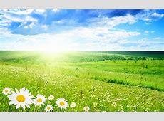 Spring Season Wallpapers   Desktop Wallpapers