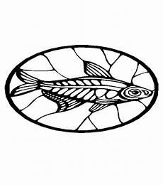 fische 00259 gratis malvorlage in fische tiere ausmalen