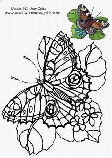 Malvorlagen Blumen Mit Schmetterling Blumen Vorlagen 1 Blumen Vorlage Schmetterling Vorlage