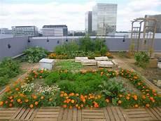 jardin potager sur terrasse la ville devient un immense potager planetloisirs